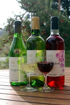 信州松川のワイン