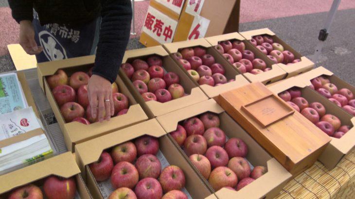 12月29日限定 リンゴ特売